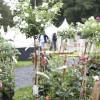 Oldenburger Gartentage 2