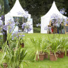 Westfälisches Gartenfestival