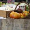 Gartenpartie - Cloppenburg  8