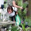 Königlich-Sächsisches Gartenfest 8