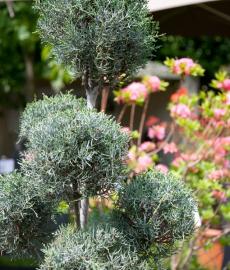 gartenmesse haus garten freizeit leipzig - Haus Garten Freizeit