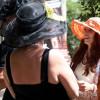 Rosen- und Gartenfestival Marktredwitz 1