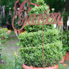 Blumen- und Gartenschau Templin