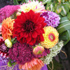 Blumenkorso Legden 1