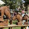 Deutsch-Amerikanisches Gartenfestival 4