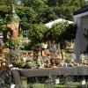 Deutsch-Amerikanisches Gartenfestival 5