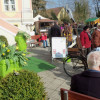 Frühlingserwachen auf Schloss Assumstadt 1