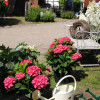 Barocke Gartentage Ludwigsburg 3
