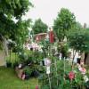 Kunst, Genuß und Garten - Bad Staffelstein 5