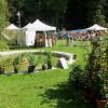 Schloss Greifenstein – Kunst, Genuß, Garten