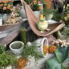 Haaner GartenHerbst