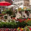 Gartenmesse Nagold 5