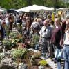 Garten- und Landhaustage - La Villa Cotta 2017 5
