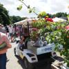 Ippenburger Sommerfestival 2015 6