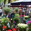 Blumen- und Gartenmarkt Herten 2016