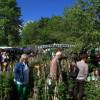 Tölzer Rosen- und Gartentage 9