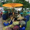 Veranstaltung: Tölzer Herbstzauber