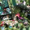 Tölzer Rosen- und Gartentage 4