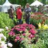 Gartenwelten Wertheim 1