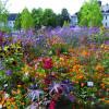 Garten & Ambiente LebensArt Sauerlandpark Hemer 2017