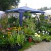 DiGa - Die Gartenmesse Ulm-Wiblingen 4