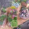 Kunst und Garten Böblingen 5