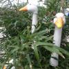 Kunst und Garten Böblingen 1