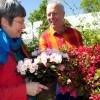 Gartenmarkt Späth'er Frühling 3