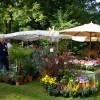 Faszination Garten faszination garten auf schloss weingartsgreuth