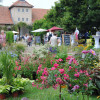 Romantic Garden Rittergut Remeringhausen 2016