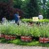 British Weekend Rittergut Remeringhausen 2016 1
