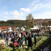 Das Gartenfest Dalheim 7