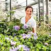 Let's Bee, das Garten von Ehren- Sommerfest 7