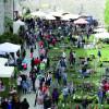 Rosen & Garten Messe Kronach 2016 7