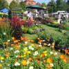 DiGA Ulm-Wiblingen 2017- Die Gartenmesse 1