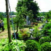 2. Gartenfestival Wasserschloss Inzlingen 2017 3
