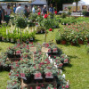 DiGA Tettnang 2017 - Die Gartenmesse 6
