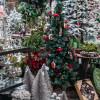Weihnachtswelt Spezial -  Garten von Ehren 7