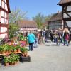 Pflanzenmarkt im Hessenpark 5