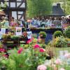 Pflanzenmarkt im Hessenpark 4