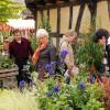Herbstlicher Pflanzenmarkt im Hessenpark 2