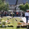 Herbstlicher Pflanzenmarkt im Hessenpark 1