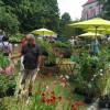 Gartenzauber Aldersbach 1