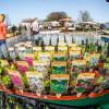 Du und dein Garten: Spezialmarkt 2017 4