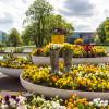 Du und dein Garten: Spezialmarkt 2017 2