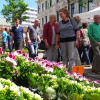 Blumen- und Gartenmarkt Herten 2017