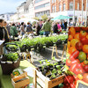 Kulturraum Garten - Neuwieder Gartenmarkt 5