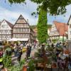 Veranstaltung: Gartenmesse Nagold