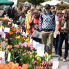 Gartenmarkt Späth'er Frühling 2017 3