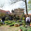 Pflanzentage Rittergut Remeringhausen 5